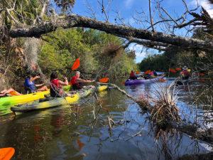 Adult kayaking