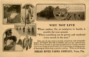 Indian River Farms Co. promotional material