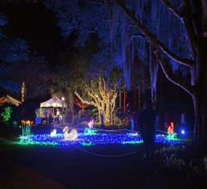 Spectacular scenes handcrafted by volunteers all year long come to life in Heathcote Botanical Gardens' Garden of Lights.