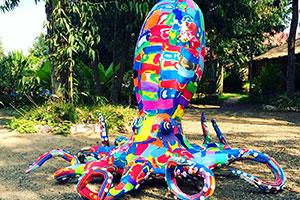 McKee-Octopus300