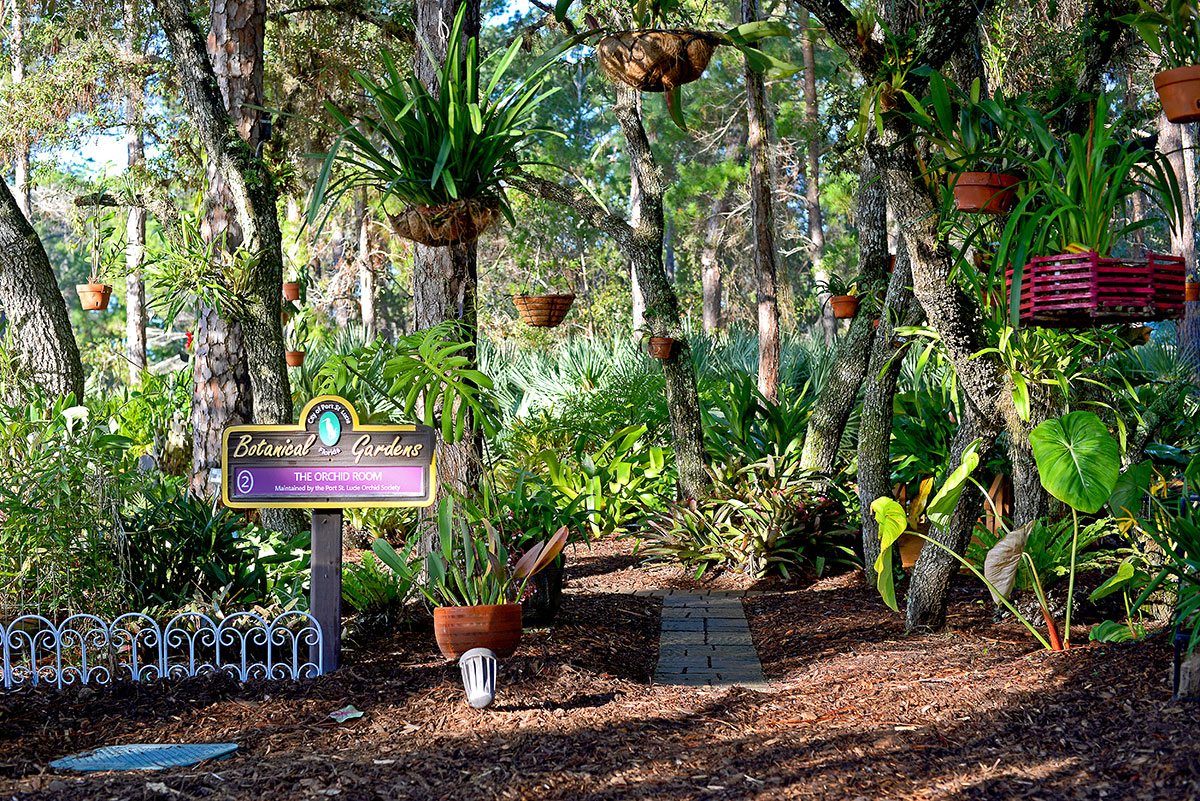 Volunteers from the Port St. Lucie Orchid Society