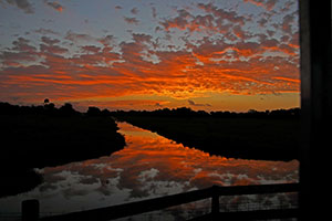 Sunrises on Adams Ranch west of Fort Pierce