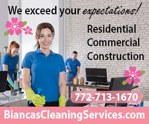 BiancasCleaning300x250