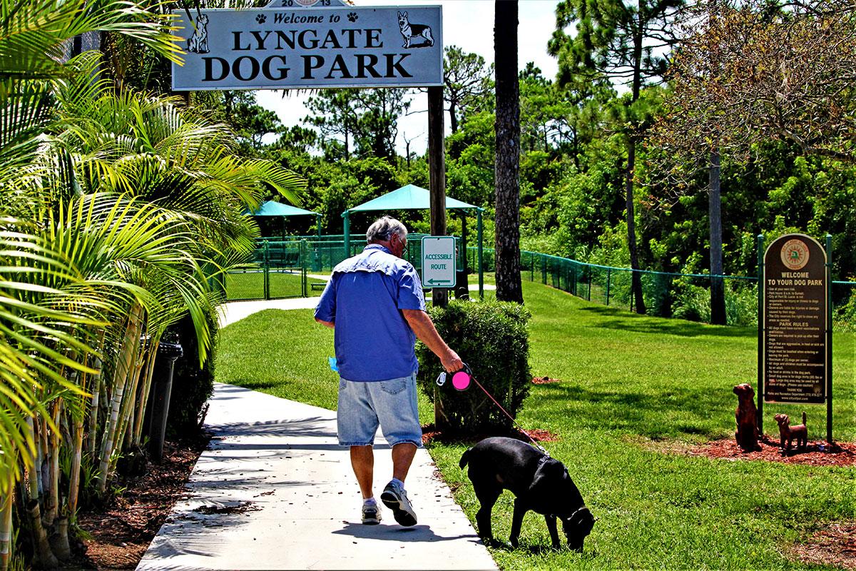 Lyngate Dog Park