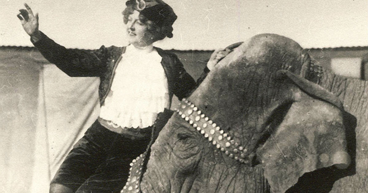 Unmarked grave of 'bravest woman' circus performer Lucia Zora to be dedicated Monday in Fort Pierce