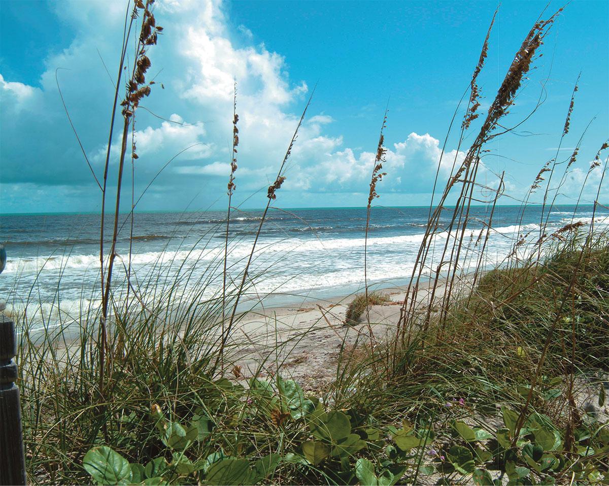 Treasure Coast beach