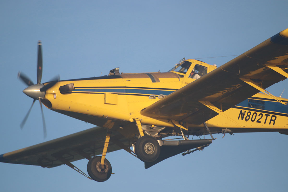 Pilot Mark Howell flies the distinctive yellow plane