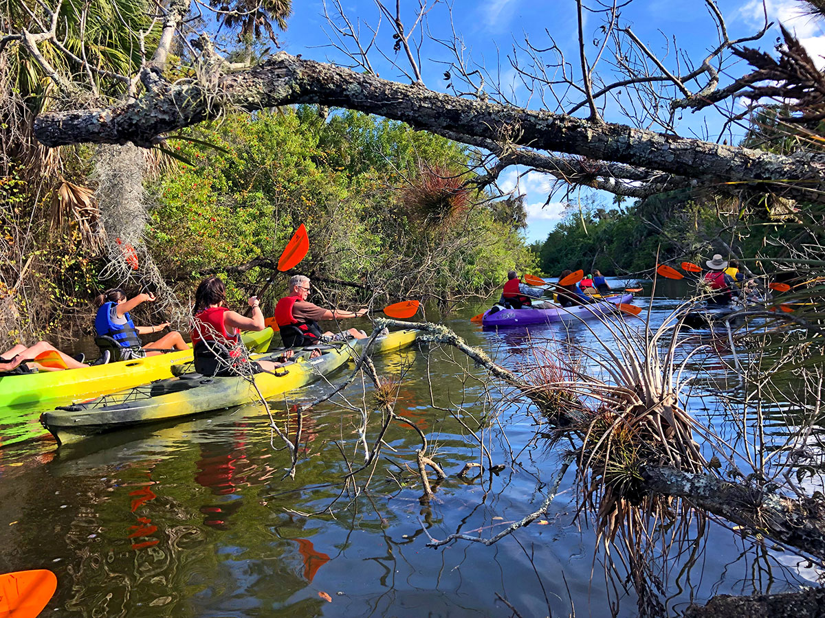 kayak or canoe the North Fork of the St. Lucie River