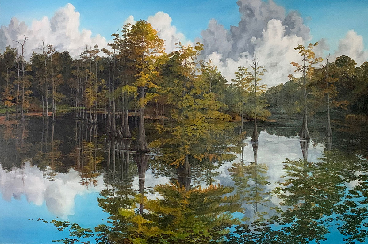 stunning reflection scene at Beluthahatchee Park
