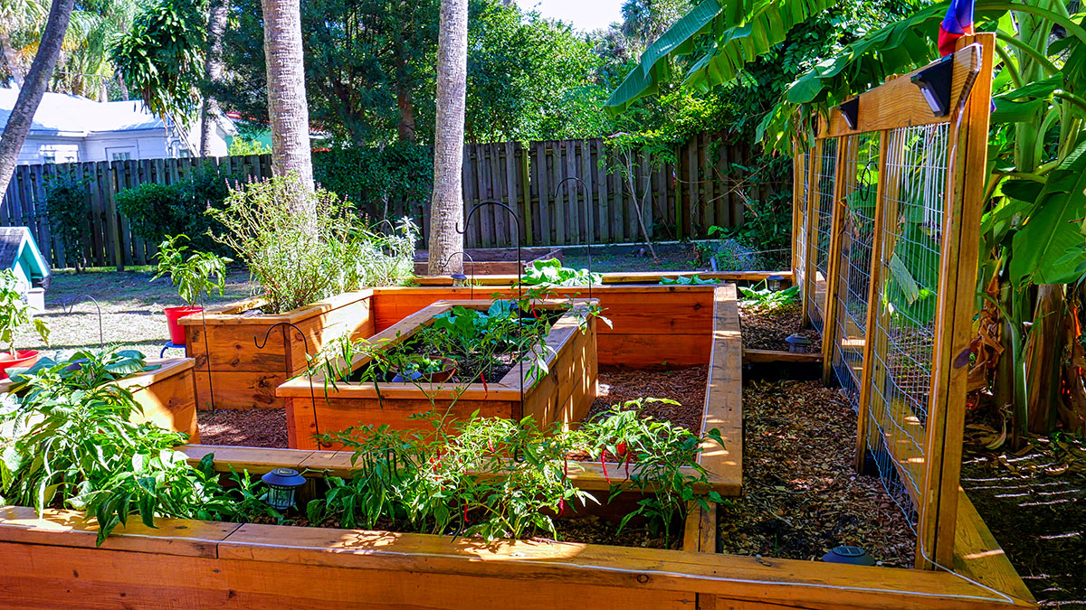 Paul, a father of seven, built this raised bed setup