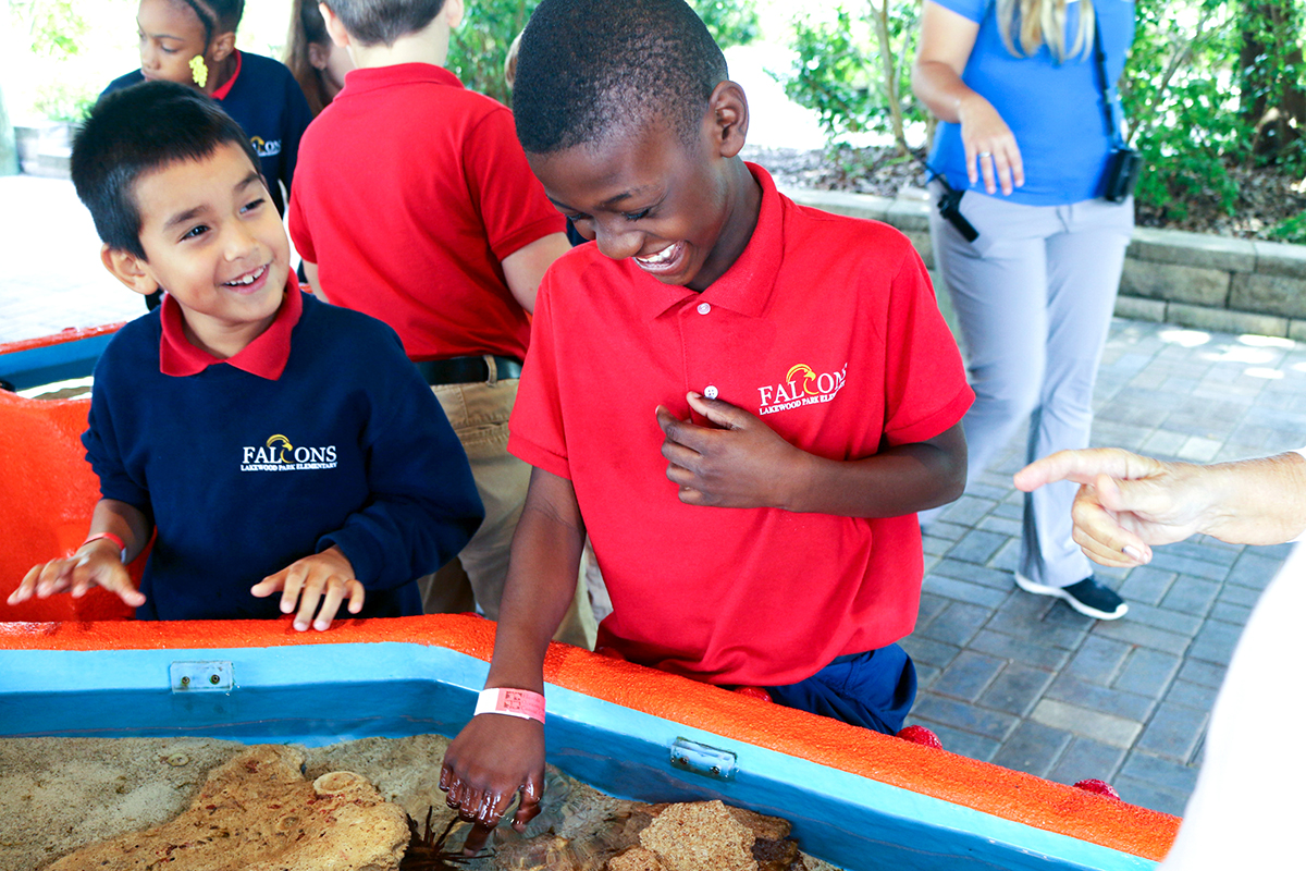 children get hands-on learning about marine life